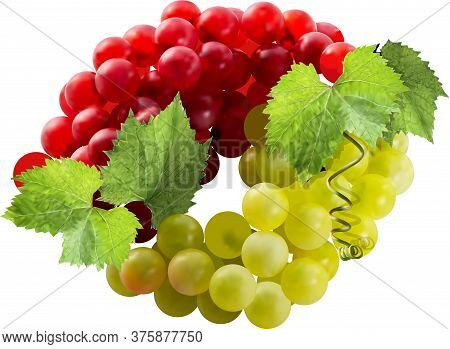 Fresh Bunches Of Red And Green Grapes Are Laid Out In A Circle. Visible Grape Leaves And Antennae. G