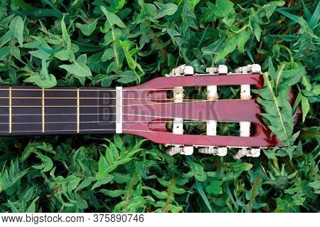 Fretboard Of An Acoustic Guitar Lying On Green Grass