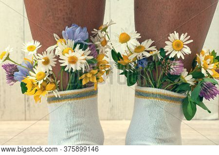 Female Legs With Fresh Flowers In Socks. A Hipster Girl With Flowers From White Socks