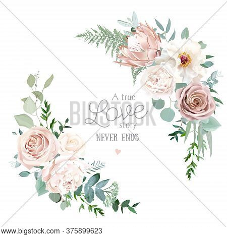 Silver Sage And Blush Pink Flowers Vector Round Frame. Creamy Beige And Dusty Rose, White Peony, Pro