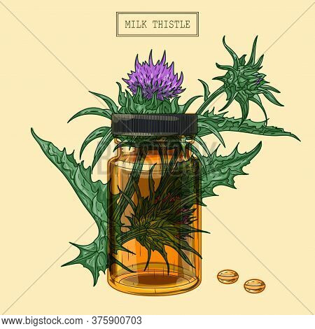 Medical Milk Thistle Plant And Pills And Glass Vial, Hand Drawn Illustration In A Retro Style