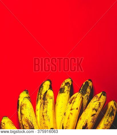 Many Bananas On Red Background With Copyspace Top View. Bunch Of Bananas Is Lying On Orange Backgrou