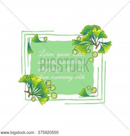 Ginkgo Biloba Branch Parts Decorating A Frame