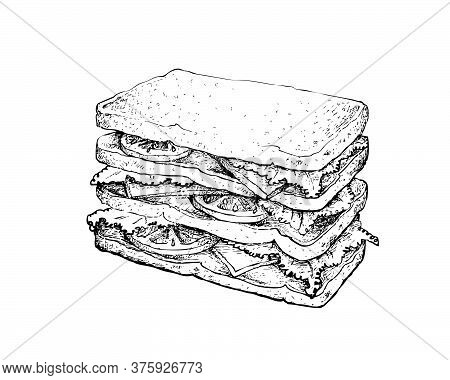Illustration Hand Drawn Sketch Of Delicious Homemade Freshly Sandwich With Bacon, Tomatoes, Lettuce