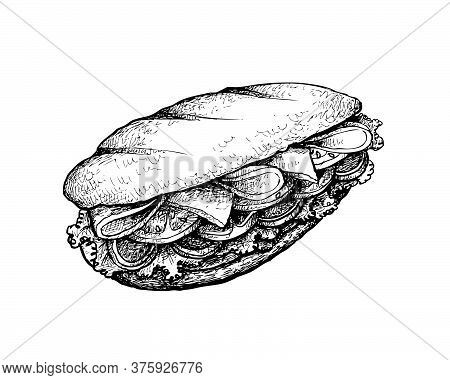 Illustration Hand Drawn Sketch Of Delicious Homemade Freshly Baguette Sandwich With Ham, Tomatoes, L