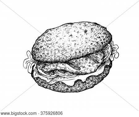 Illustration Hand Drawn Sketch Of Delicious Homemade Freshly Grilled Grouper Sandwich Or Layer Hambu