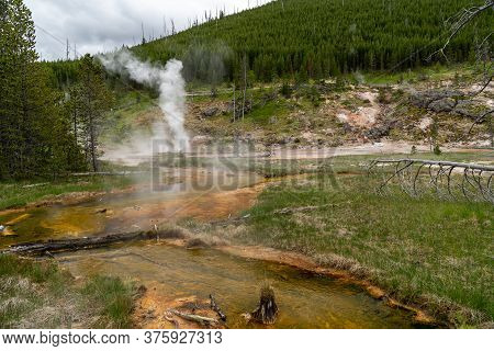 Hot Springs And Geysers (including Blood Geyser) Along The Artists Paint Pots Trail In Yellowstone N