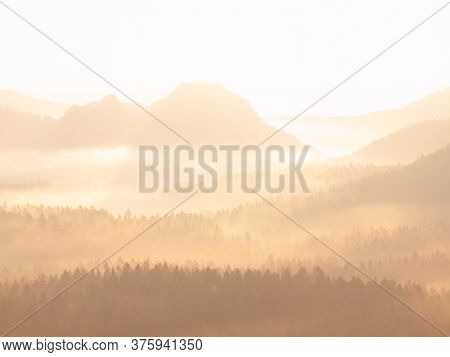 Bright Dawn In Early Morning On Countryside.  Landscape Of Natural Wild Nature In Warm Morning Sunli