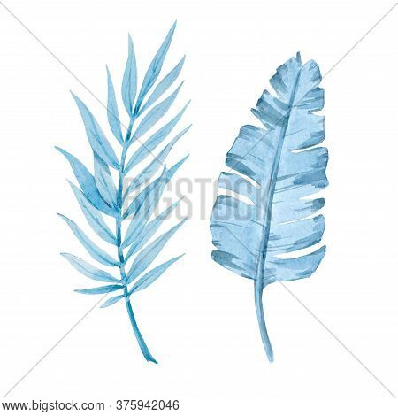 Beautiful Image With Watercolor Tropical Leaves. Stock Illustration
