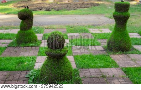 Chess Pieces Made From Grass. Image Of A Street Chess Piece.
