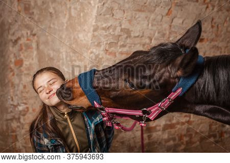 A Young Girl Kisses A Horse. A Horse Kisses His Mistress.
