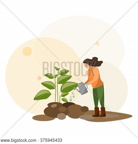 Young Woman Working In Garden Or Farm. Gardening Girl Is Watering A Green Plant. Vector Agriculture