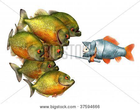 goldfish knight and piranhas
