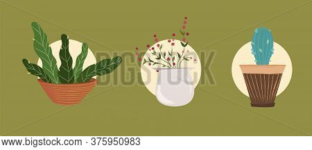 Indoor Landscape Garden Potted Plants. Vector Set Green Plant In Pot. Home Plants In Pots On A Green