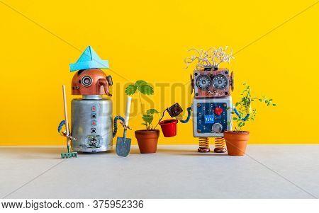 Smart Garden Robotics Technology. Two Happy Breeder Gardener Robots Posing With A Young Plants Grown