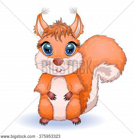 Red Squirrel, Front View Of Sciurus Vulgaris, Isolated On White Background