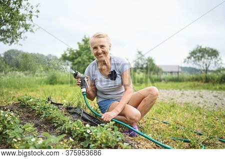 Mature Elderly Woman Watering Plants With Water Hose. Farming, Gardening, Agriculture, Old Age And P