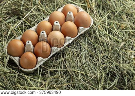 Tray With Chicken Eggs In The Hay. View From Above.