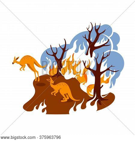 Forest Fire 2d Vector Web Banner, Poster. Climate Change. Natural Disaster. Burning Woods Flat Scene