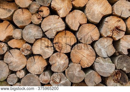 Round Firewood Stacked At Woodpile. Background And Texture.