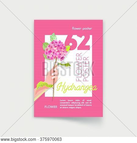 Flower Poster With Woman Hand Hold Hydrangea Blossom Branch On Pink Background. Holiday Celebration,