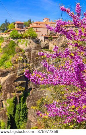 Defocused Great Meteoron Monastery, Meteora Mountain Rock, Trikkala, Greece And Branch Of Pink Cherr