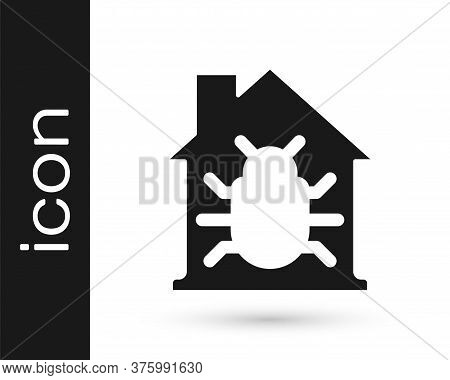 Black House System Bug Concept Icon Isolated On White Background. Code Bug Concept. Bug In The Syste