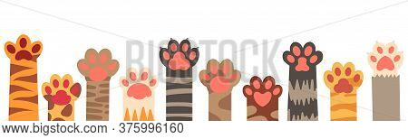 Colorful Cat Paws Set. Cute Feline Claws With Stripes And Dots Isolated On White Background. Domesti