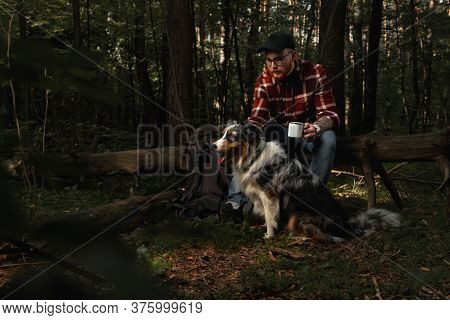 Backpacker Tourist With Aussie Australian Breed Dog Taling A Rest Afther Strolling In Forest. Active