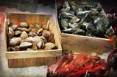 Close up of seafood in a fish market poster