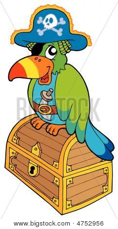 Pirate parrot sitting on chest - vector illustration. poster