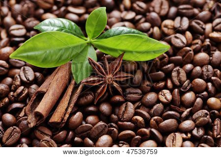 coffee beans with anise and cinnamon stick - coffee time