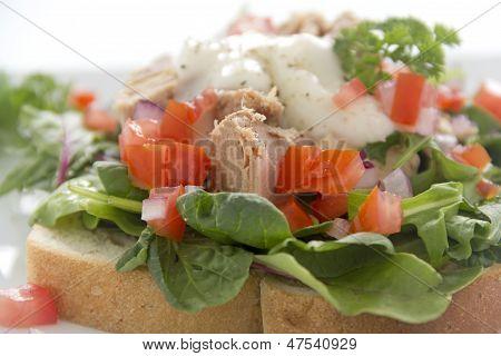 Open Tuna Salad Sandwich