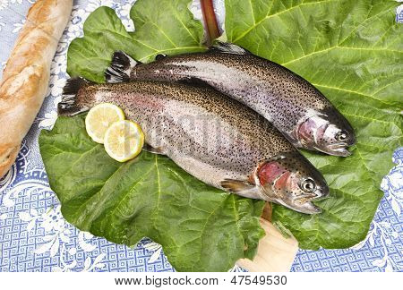 """two freshly caught trouts on a rhubarb leaf served on a wooden board with crusty bread blue tablecloth with embroidered flowers """"close-up"""" poster"""