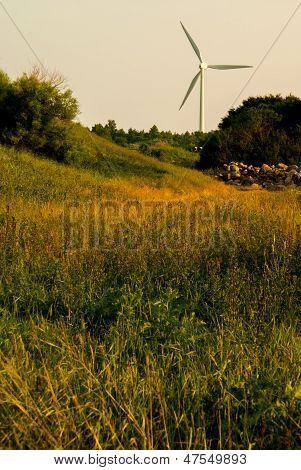 Windturbine_meadow