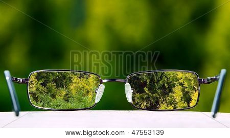 Eyeglasses On Green Nature Background
