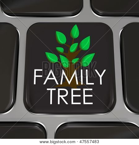 A computer keyboard key with the words Family Tree and picture to symbolize researching your ancestor records on an online database