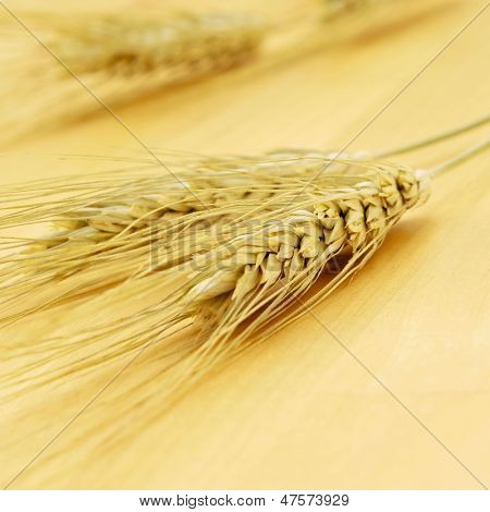 closeup of some wheat ears on a wooden surface