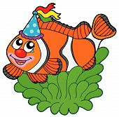 Cartoon clownfish in anemone on white background - vector illustration. poster