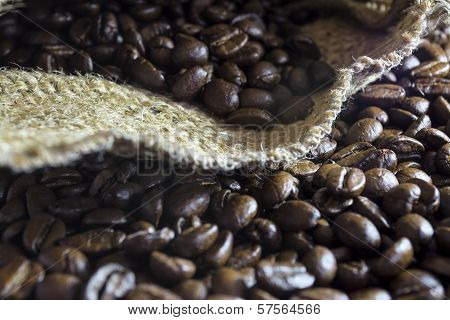 Coffee Beans Inside His Jute Bag