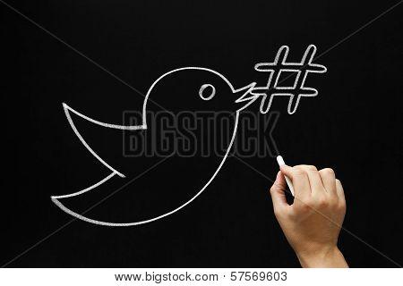 Bird Hashtag Concept