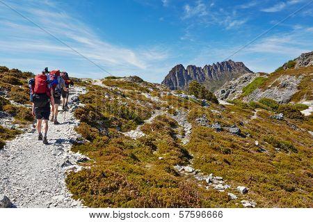 Hikers On Overland Trail, Cradle Mountain, Tasmania