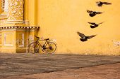 Pigeons take flight next to a bicycle leaning against the aged, yellow wall of La Merced Church in Antigua, Guatemala poster