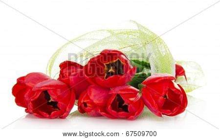 The bouquet of red tulips is decorated with a gossamer and a ribbon isolated on white poster