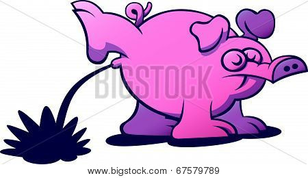 Rude pig pissing by raising its hind leg