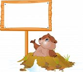 Vector illustration of a cute groundhog popping out of a hole near billboard poster