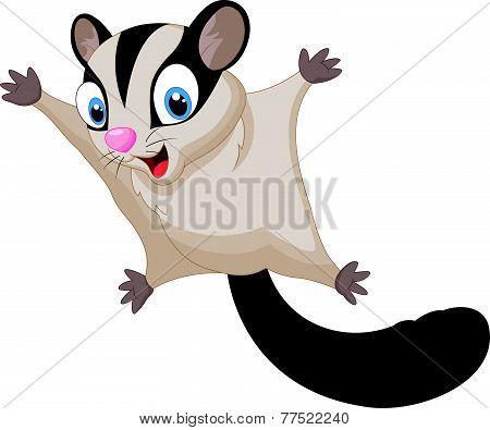Sugar glider cartoon