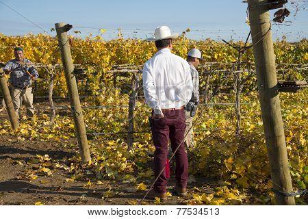 Foreman Supervises Farm Hands