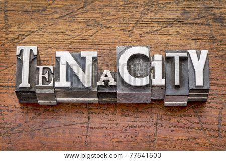tenacity word in mixed vintage metal type printing blocks over grunge wood