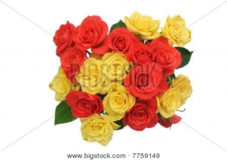 A posy of roses isolated